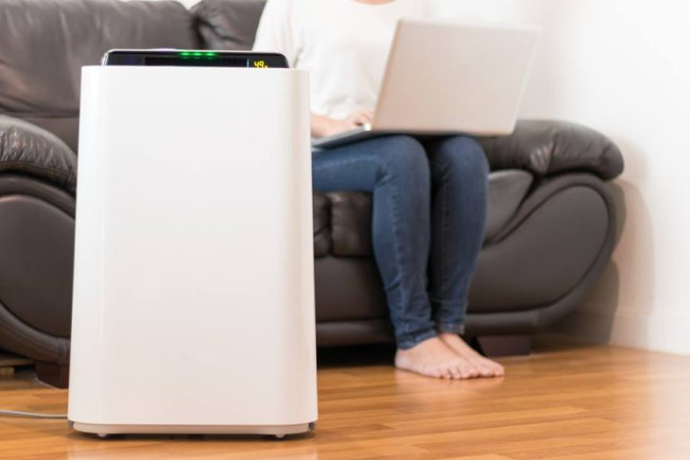 Best Air Purifier For Smoke Review